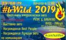 bWild2019
